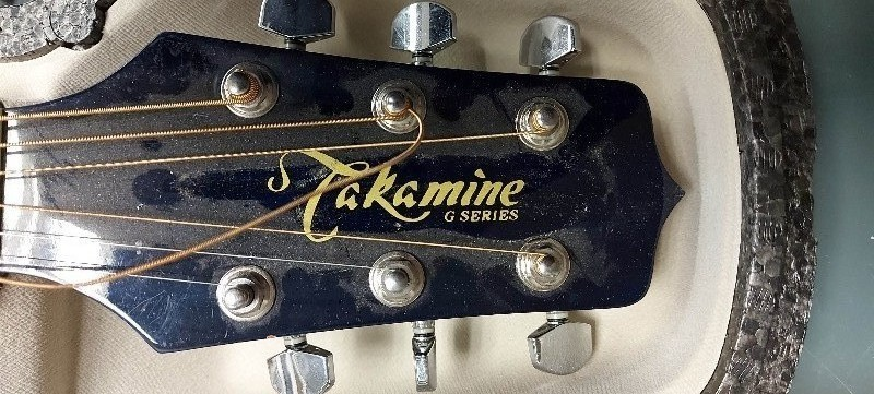 Guitar with Case, Takamine G Series