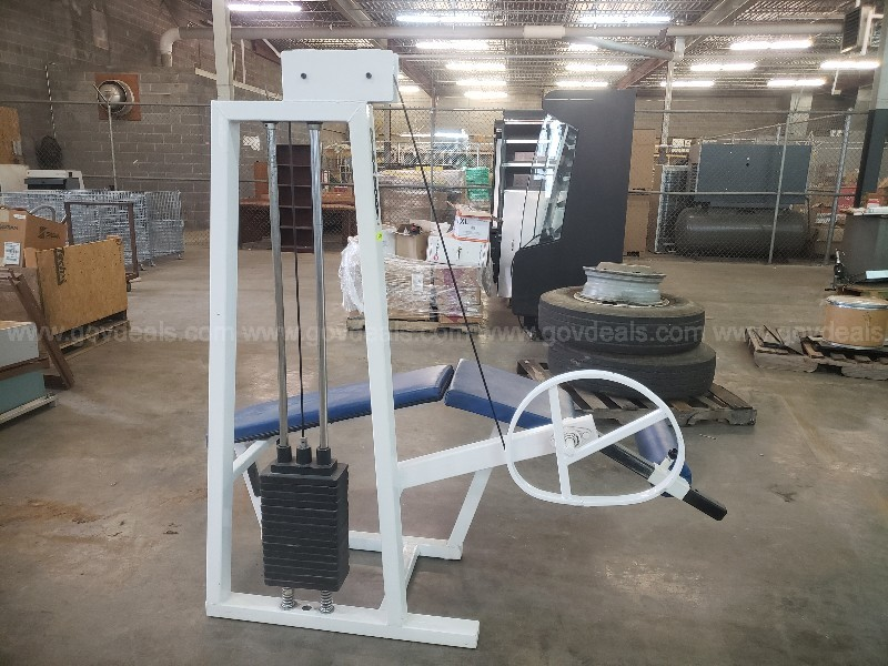 Professional Weight Training Equipment / Dyna Body